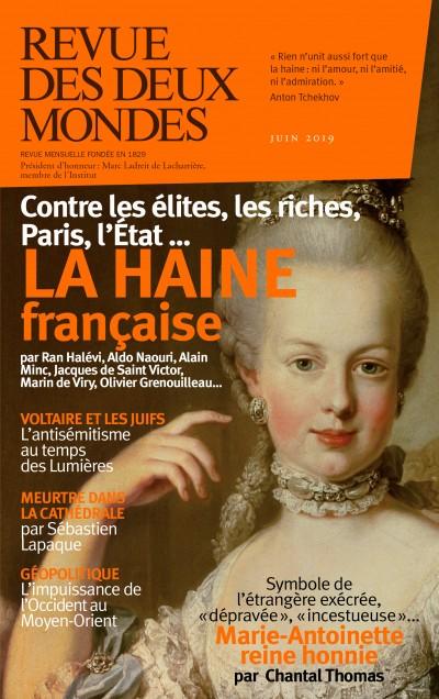 Jaquette La haine française