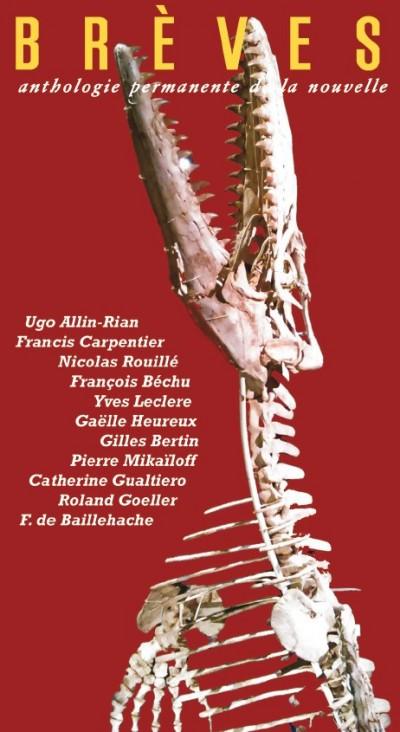 Couverture de Ugo Allin-Rian
