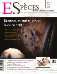 Bactéries, microbes, virus... la vie en petit !