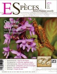Orchidées et aracées