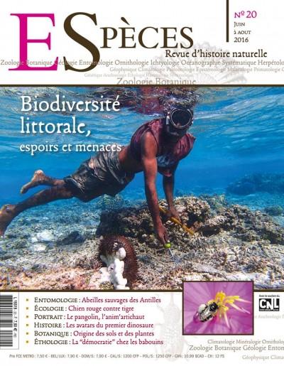 Biodiversité littorale