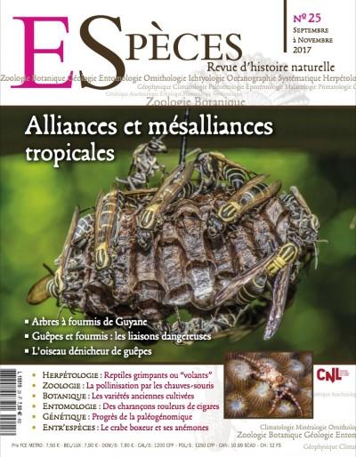 Alliances et mésalliances tropicales