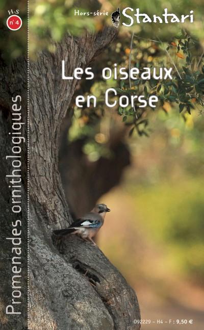 Les oiseaux en Corse