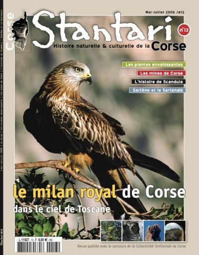 Le milan royal de Corse