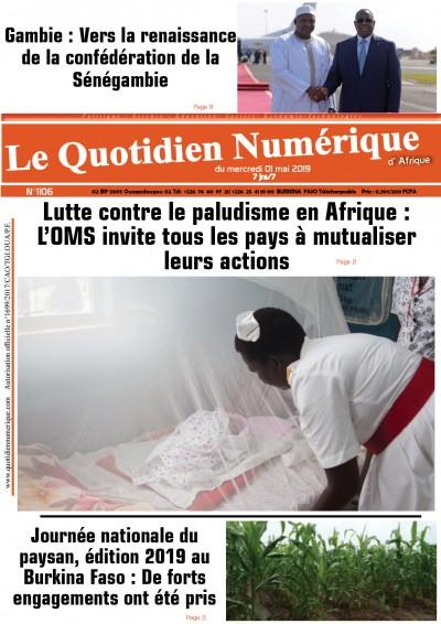Lutte contre le paludisme en Afrique